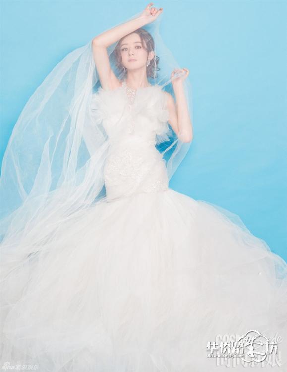 素材标签 婚纱
