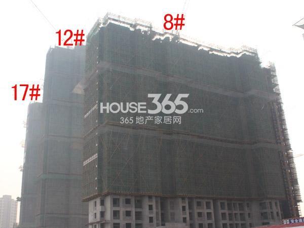弘阳广场8#、12#、17#楼工程进度图(2015.2)