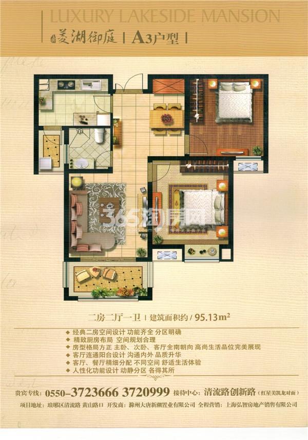 大唐菱湖御庭A3户型图两房两厅一卫 95.13平