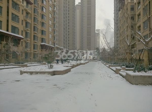 北城国际雪景图