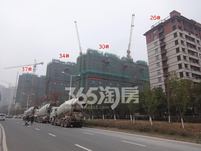 高科荣境在建楼栋实景图(1.18)