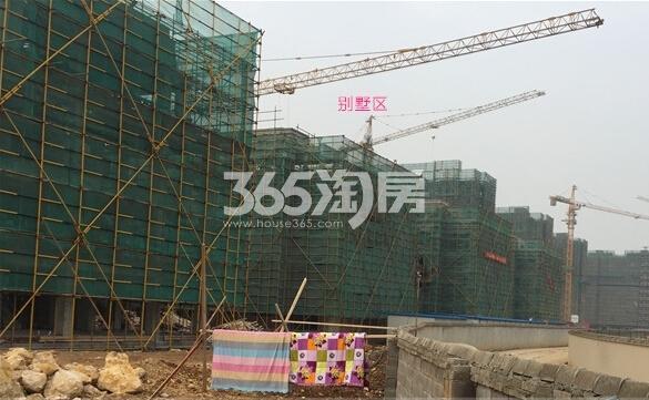 银亿东城12街区别墅楼栋实景图(2.14)