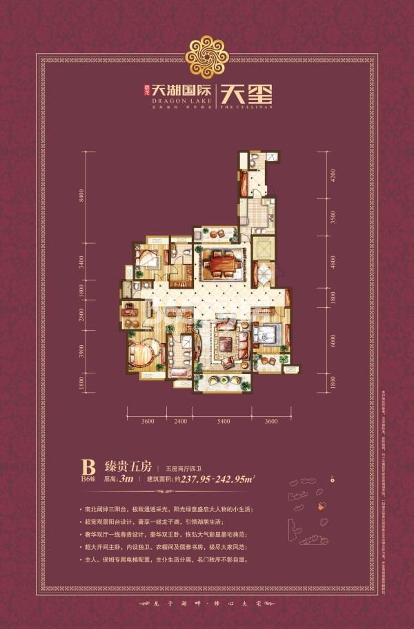 天湖国际B6栋 五室两厅240㎡户型图