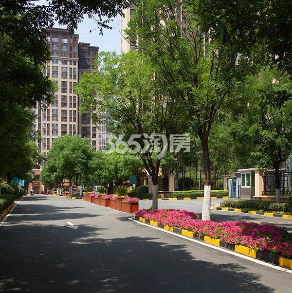 华远海蓝城实景图