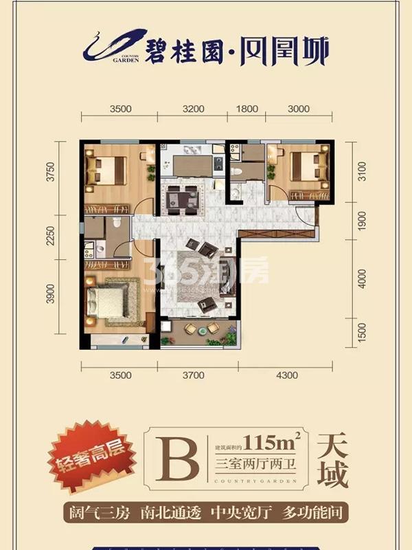 B户型3室2厅2卫1厨115.00㎡