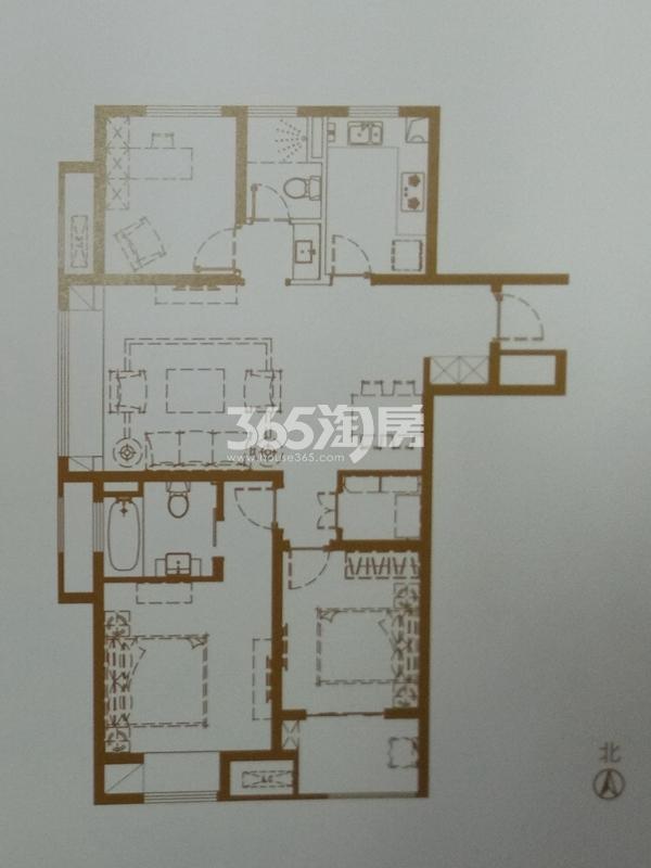 C3户型115㎡三室两厅