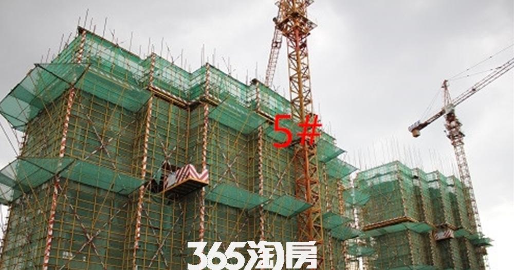 新城北宸紫郡5#在建实景图(2017.8)