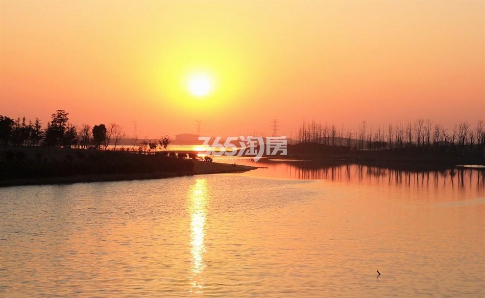 滨湖金茂悦周边环境实景图(9.4)