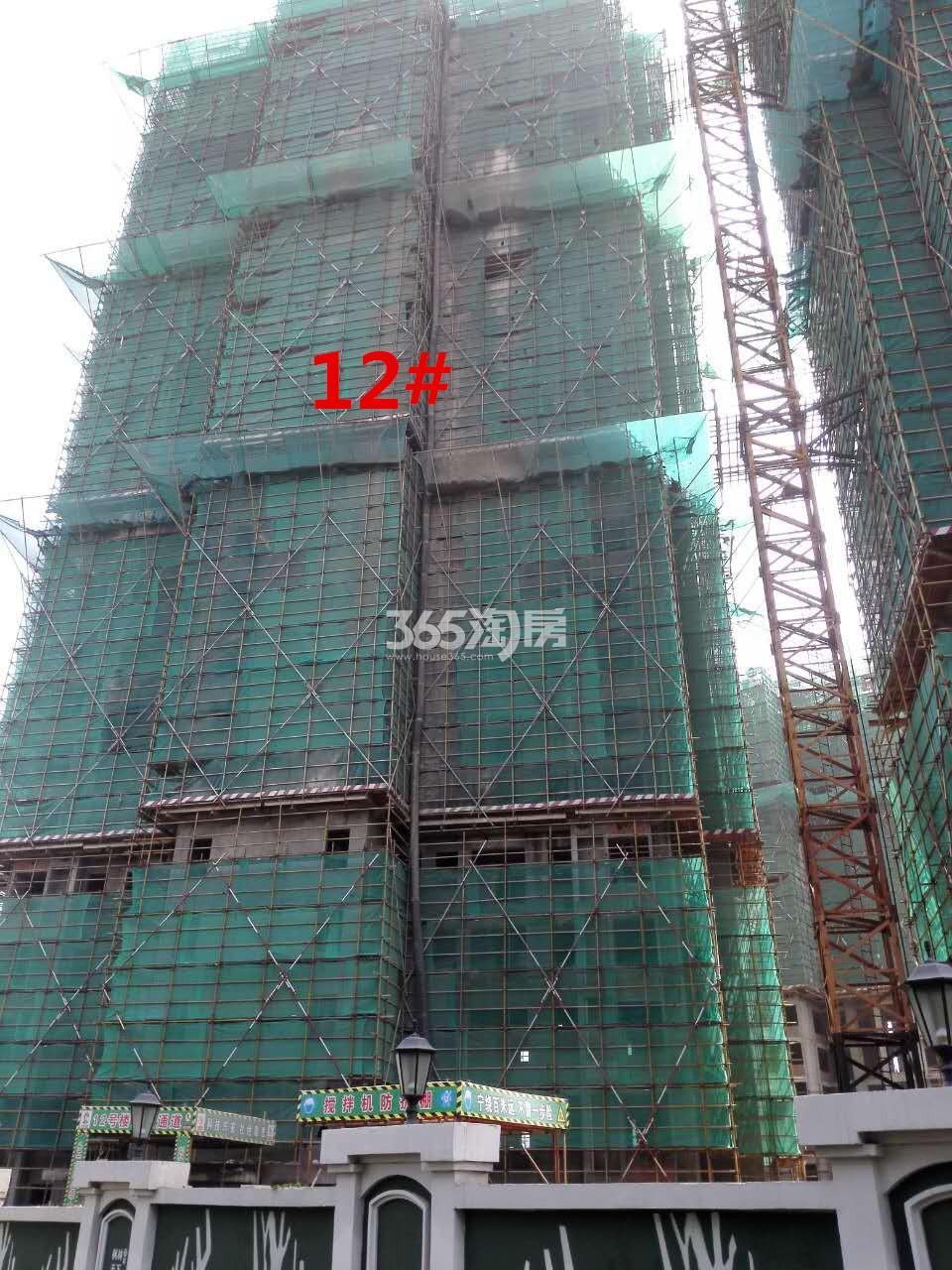 枫林天下康城高层12#楼在建实景图(9.11)